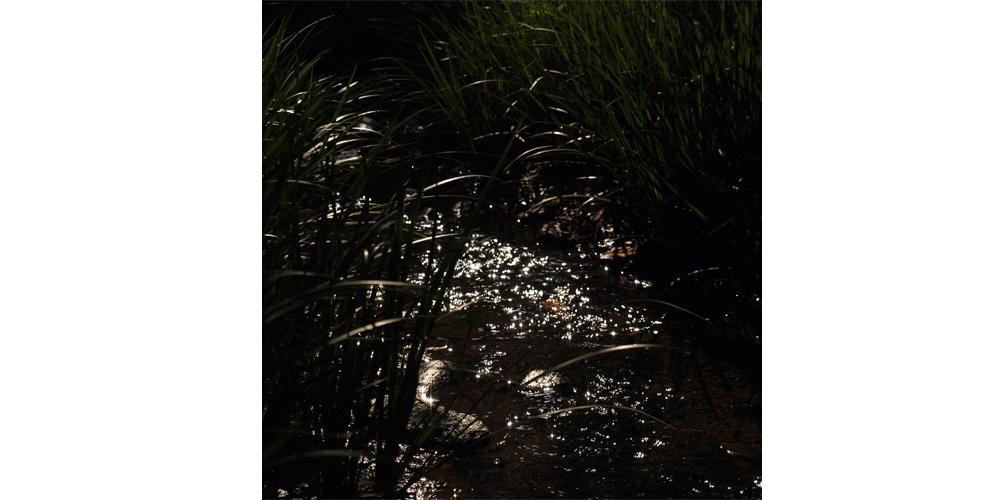 【終了】「たゆたえども沈まず 」写真展 2014.10.2(thu) – 10/ 9(thu)